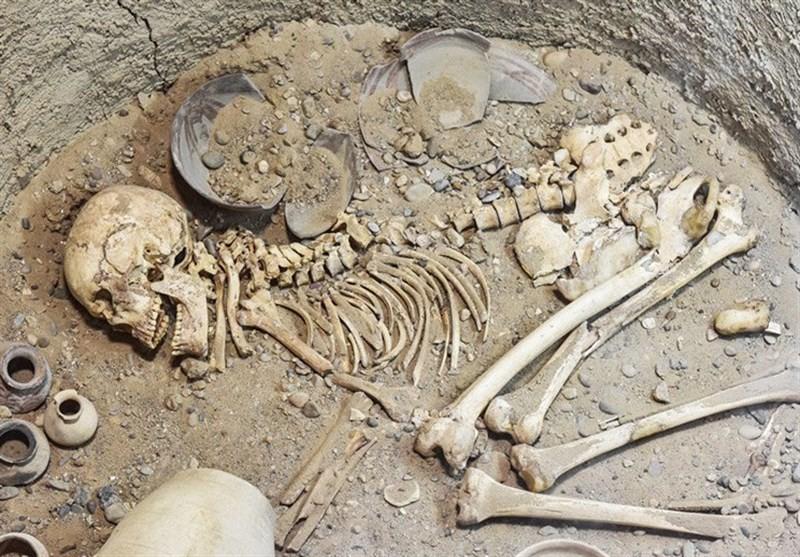 استخوانها و ظروف کشفشده در کاوشهای باستانی
